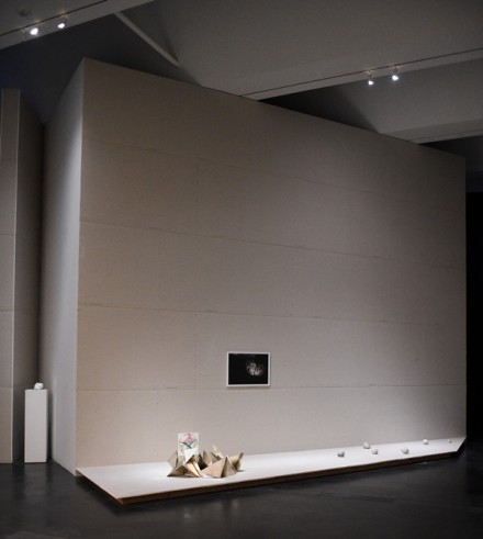 Pierre Huyghe (Installation View), Courtesy Stefanie Keenan for LACMA