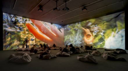 Pipilotti Rist, Worry Will Vanish (Installation View) (2014)