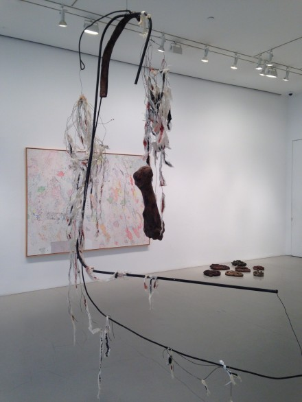 Nancy Graves (Installation View)