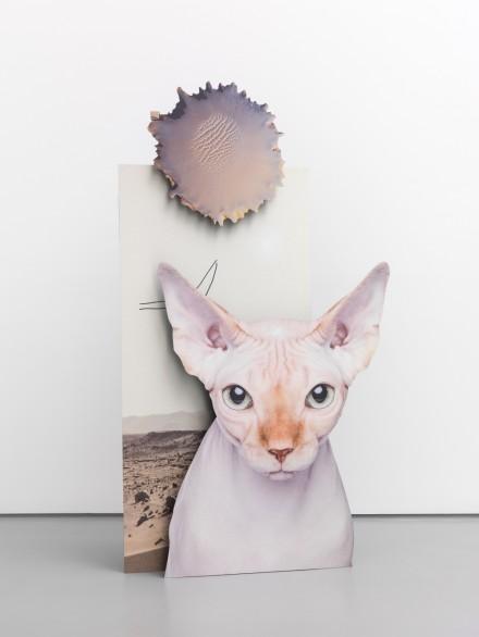 Katja Novitskova, Mars Potential (cat) (2015), via Max Hetzler