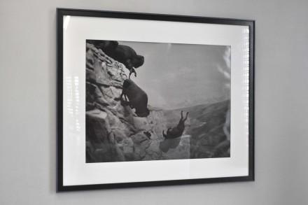 DavidWojnarowicz-Untitled (Buffalos)-1988-89_Puntadelladogana_SK14