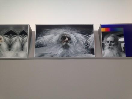 "Lucas Samaras, ""Albums 2,"" Pace Gallery"