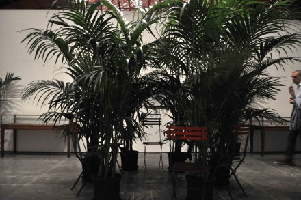 MarcelBroodthaers_Un jardin d'hiver_1974_CentralPavilionVeniceBiennale_SK_1