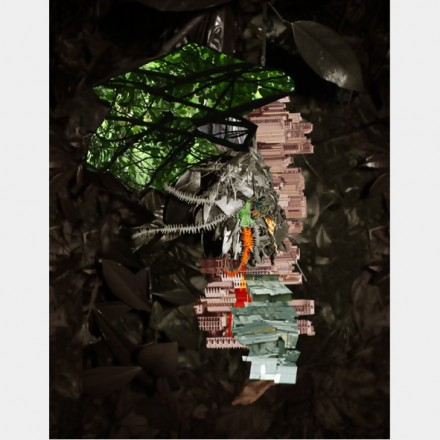Caio-Reisewitz-Luciana-Brito-Galeria