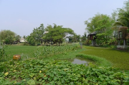 Self-Sufficient Artist Residency in Thailand