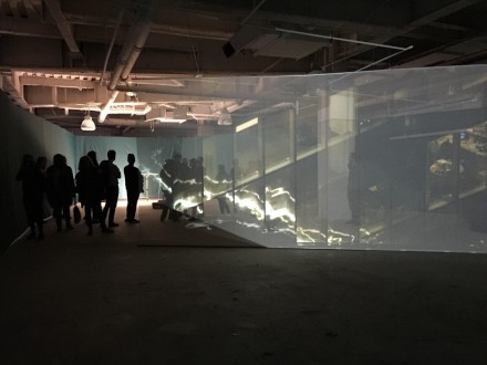Jesper Just and FOS, in the shadow: of a spectacle: is the view of the crowd (Installation View), via Rae Wang for Art Observed