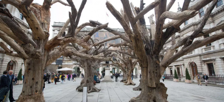 Ai Wewei, Tree (2009-2015), via Royal Academy
