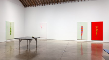 Tauba Auerbach, Projective Instrument (Installation View)
