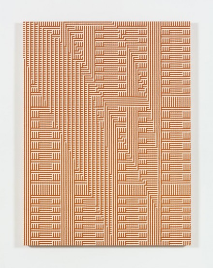 Tauba Auerbach, Shadow Weave - Metamaterial Slice Ray (2013)