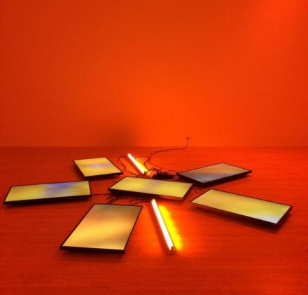 Diana Thater, Untitled Videowall (Butterflies) (2008), via Art Observed